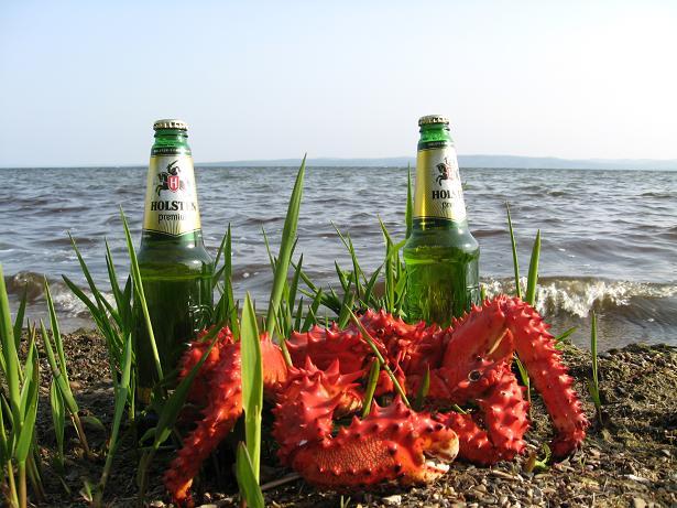 Отдых на Сахалине