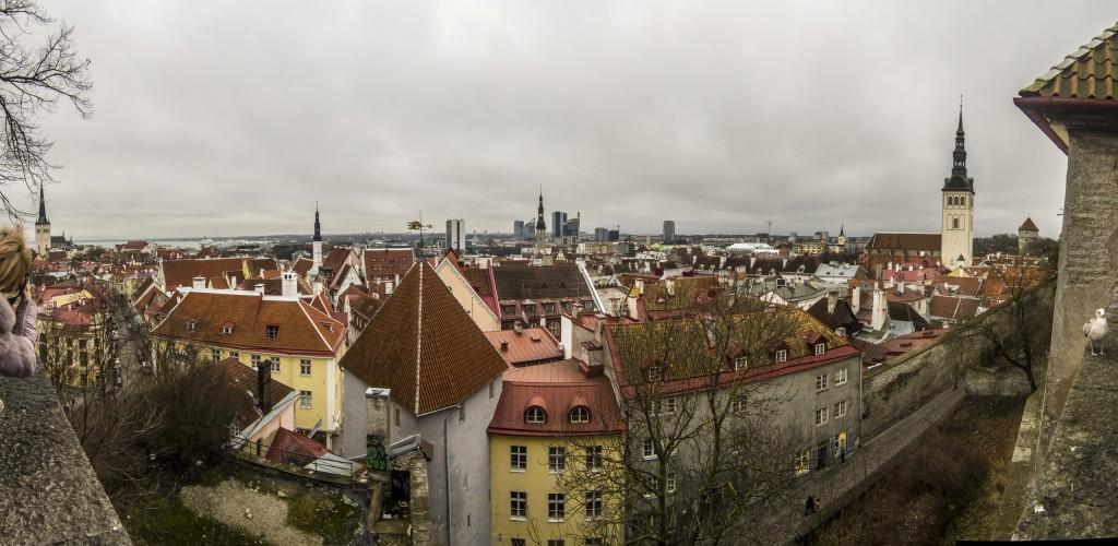Таллин. Старый город. Вид с замка.